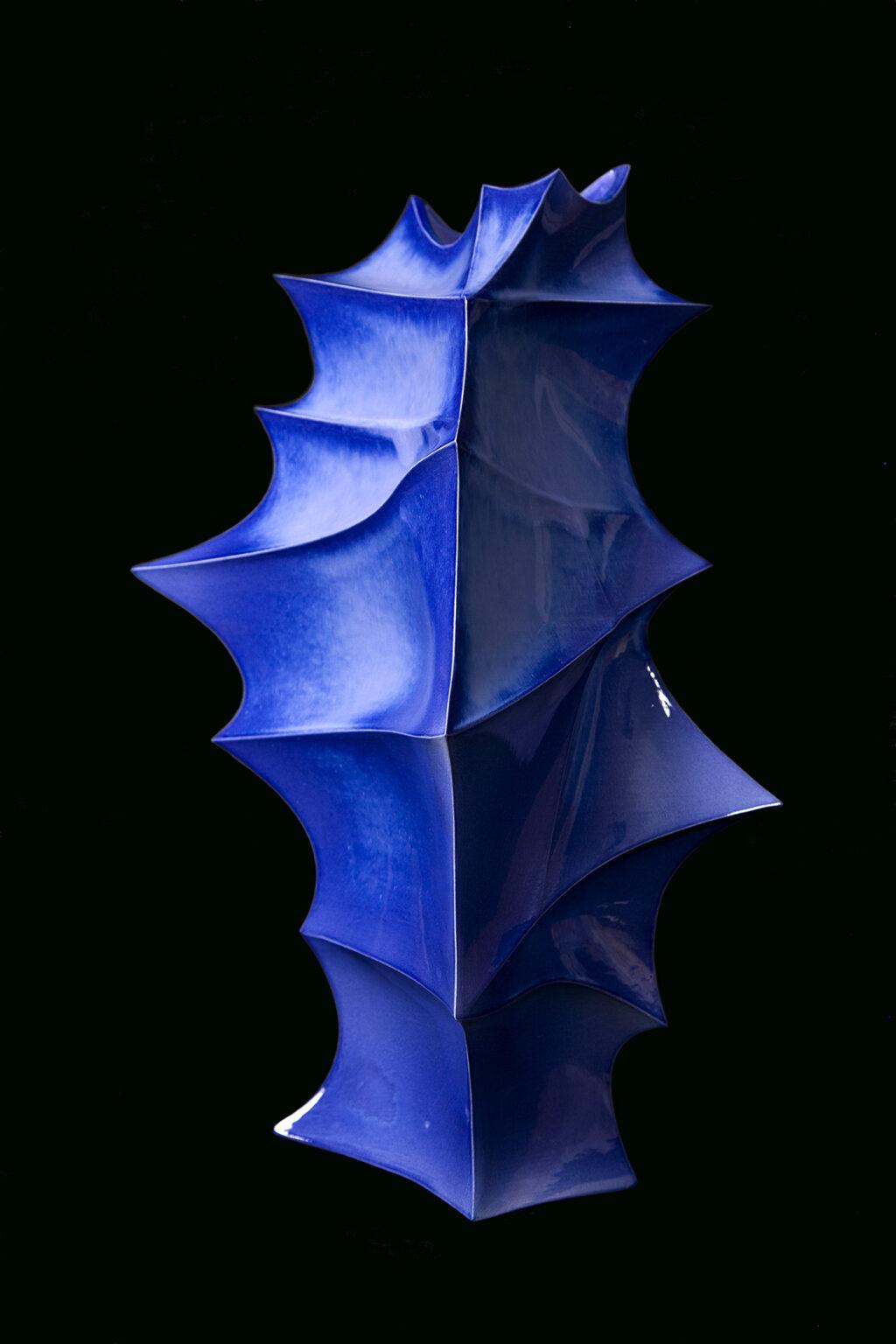 """מתוך הסדרה """"Lanceolate"""" אופיר זמודזיאק צילום: הדר סייפן הביאנלה לאומנויות ולעיצוב מוז""""א, מוזיאון ארץ-ישראל, תל-אביב"""